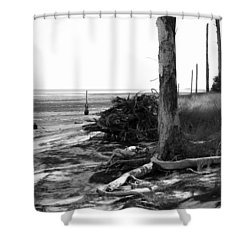 Bwhurricane Damage Shower Curtain by Judy Hall-Folde