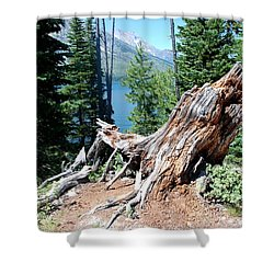 Shower Curtain featuring the photograph By Jenny Lake by Dany Lison