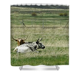 By The Horns Shower Curtain by Sara Stevenson