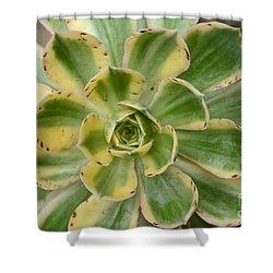 Cactus 63 Shower Curtain