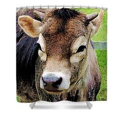 Calf Closeup Shower Curtain by Susan Savad
