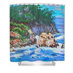 California Coast Shower Curtain by Carolyn Donnell