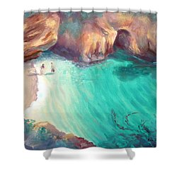 California Dreaming Shower Curtain by Karin  Leonard