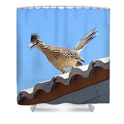 Shower Curtain featuring the photograph California Roadrunner by Carla Parris
