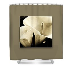 Calla Lilies Art Shower Curtain