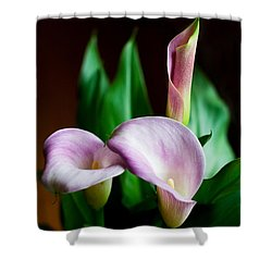 Shower Curtain featuring the photograph Calla Lily by Barbara McMahon