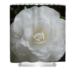 Camellia After Rain Storm Shower Curtain
