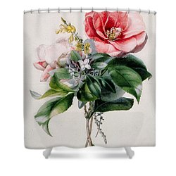 Camellia And Broom Shower Curtain by Marie-Anne