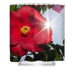 Camellia Flower Shower Curtain by Mats Silvan