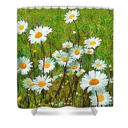 Shower Curtain featuring the painting Camomiles Field by Dragica  Micki Fortuna