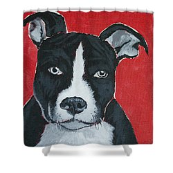 Can I Go Home With You Shower Curtain by Jaime Haney