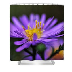 Candles On A Daisy Shower Curtain by Kaye Menner
