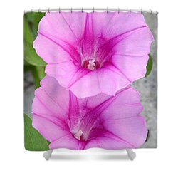 Candy Pink Morning Glory Flowers Shower Curtain by Sabrina L Ryan