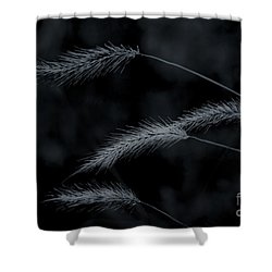 Can't Be Broken Shower Curtain by Kim Henderson