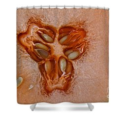 Cantaloupe Core Shower Curtain by Susan Herber