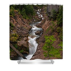 Canyon Stream Shower Curtain by Mike Reid