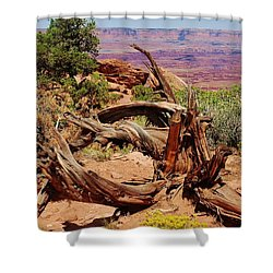 Shower Curtain featuring the photograph Canyonlands 2 by Dany Lison