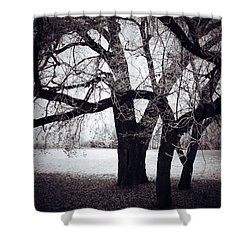 Captions Cradle  Shower Curtain by Jerry Cordeiro