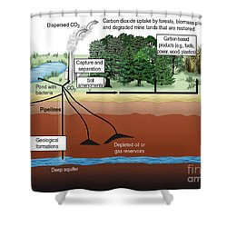 Carbon Dioxide Sequestration Shower Curtain by ORNL/Science Source