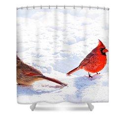 Cardinal Couple Shower Curtain by Tamyra Ayles