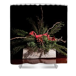 Cardinal In Winter Shower Curtain by Dinah Anaya