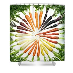 Carrot Pigmentation Variation Shower Curtain by Science Source