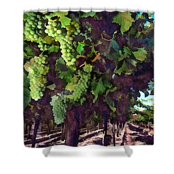 Cascading Grapes Shower Curtain by Elaine Plesser
