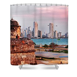 Castles Made Of Sand Shower Curtain by Skip Hunt