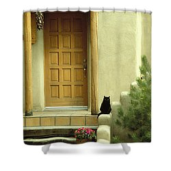 Cat Post Shower Curtain by Brent L Ander