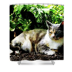 Cat Relaxing In Garden Shower Curtain by Susan Savad