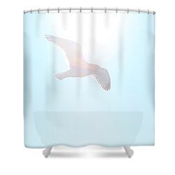 Catch The Rays Shower Curtain by Karol Livote