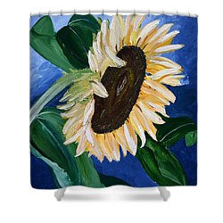 Catching The Rays Shower Curtain by Dolores  Deal