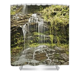 Cathedral Falls 3249 Shower Curtain by Michael Peychich
