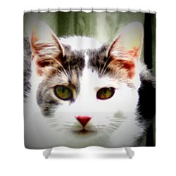 Cats Meow Shower Curtain by Bill Cannon