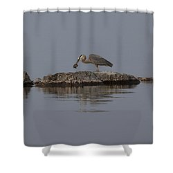 Caught One Shower Curtain by Eunice Gibb