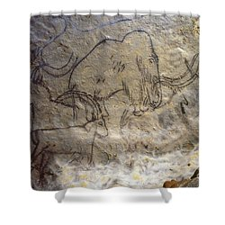 Cave Art - Mammoth And Ibexes Shower Curtain by Granger
