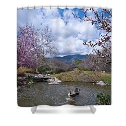 Celebrating Spring Shower Curtain by Mike Herdering