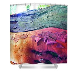 Shower Curtain featuring the digital art Celebration by Richard Laeton