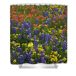 Central Texas Mix Shower Curtain