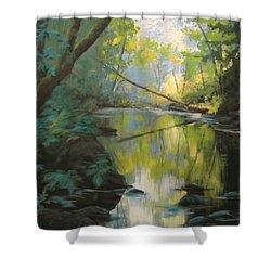 Champagne Creek Shower Curtain by Karen Ilari