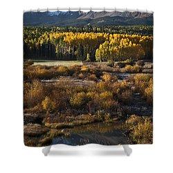 Changing Season Shower Curtain by Jeff Kolker