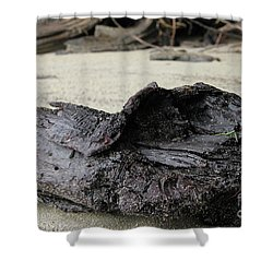 Charred Driftwood Shower Curtain by Nancy Harrison