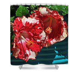 Cheery Cherry Appaloosa Shower Curtain by Lynn Bauer