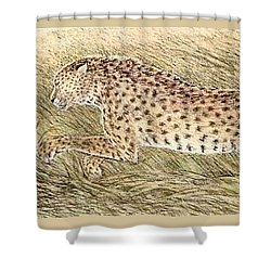 Cheetah And Gazelle Fawn Shower Curtain by Tim McCarthy