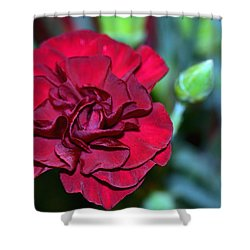 Cherry Red Carnation Shower Curtain by Sandi OReilly