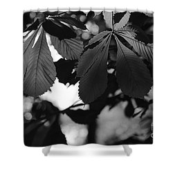 Chestnut Leaves Shower Curtain