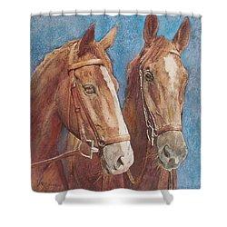 Chestnut Pals Shower Curtain