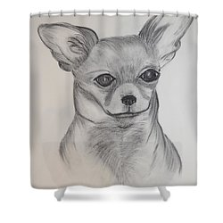 Shower Curtain featuring the drawing Chi Chi by Maria Urso