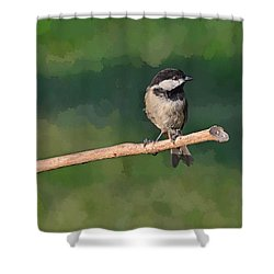 Chickadee On A Stick Shower Curtain by Debbie Portwood