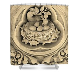 Chicks In Stone In Sepia Shower Curtain by Rob Hans